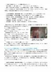 82号会報・2013年4月20日_08