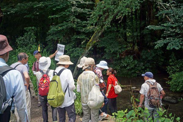 第275回元気で歩こう会 河童のクゥと100本目の名木を訪ねて 30 ...