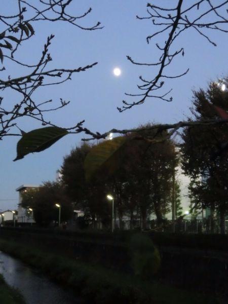 ①月は・・