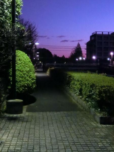 ②日の出直前の黒目川