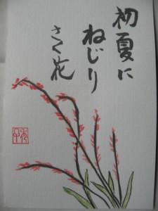 DSCN6670