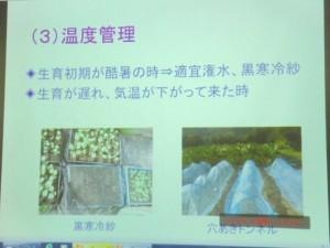 家庭菜園セミナー「秋作のポイント」 (14)
