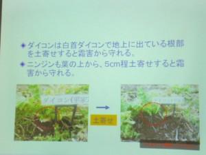 家庭菜園セミナー「秋作のポイント」 (17)