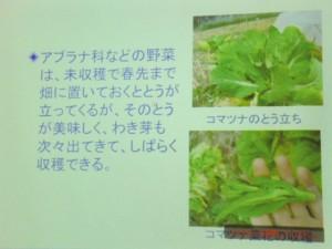 家庭菜園セミナー「秋作のポイント」 (22)