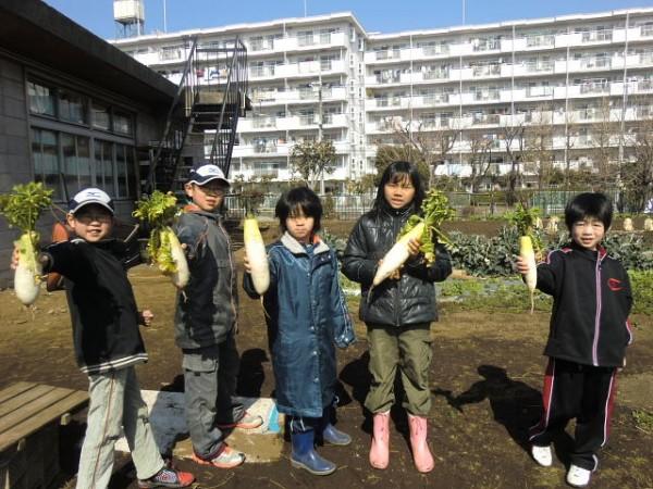 家庭菜園セミナー「秋作のポイント」 (29)