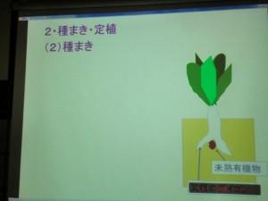 家庭菜園セミナー「秋作のポイント」 (8)
