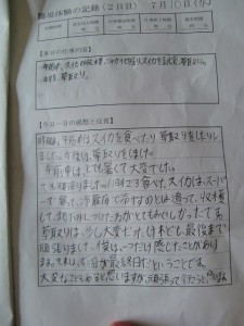 H25syokubataiken_other (15)