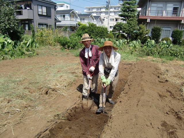 H25秋野菜a (4)