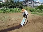 H25秋野菜a (2)