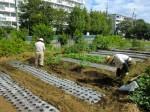 H25秋野菜報告 (3)