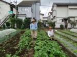 H25秋野菜報告 (21)