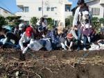 H251027サツマイモ掘り (11)