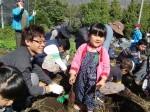 H251027サツマイモ掘り (30)
