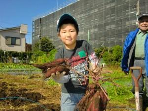 H251027サツマイモ掘り2 (34)