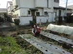 野島農園1月活動報告 (39)