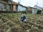 251100野島農園11月様子 (11)