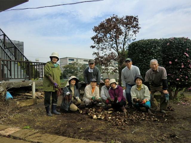 251100野島農園11月様子 (37)