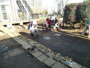 251100野島農園11月様子 (45)