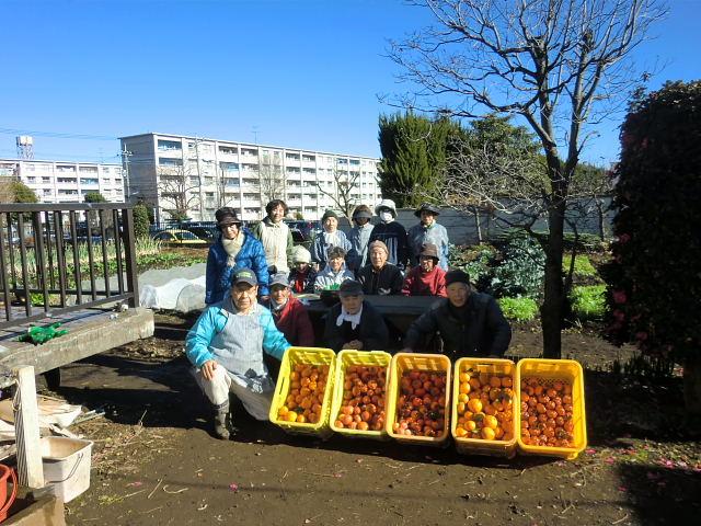 251200野島農園12月共同作業日 (12)