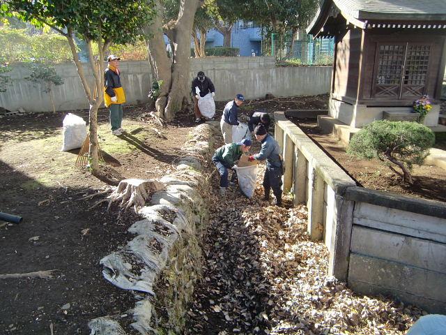 251200野島農園12月共同作業日 (15)