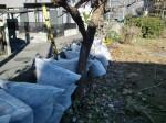251200野島農園12月共同作業日 (17)