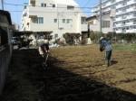 H250315親子農業体験ジャガイモ掘り用種植 (10)