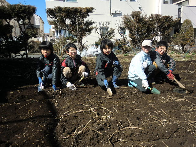 H250315親子農業体験ジャガイモ掘り用種植 (48)