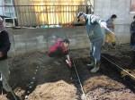 H250315親子農業体験ジャガイモ掘り用種植 (50)