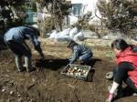 H250315親子農業体験ジャガイモ掘り用種植 (53)