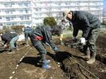 H250315親子農業体験ジャガイモ掘り用種植 (22)