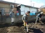 H250315親子農業体験ジャガイモ掘り用種植 (28)