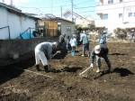 H250315親子農業体験ジャガイモ掘り用種植 (34)