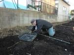 H250315親子農業体験ジャガイモ掘り用種植 (36)