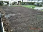 H260329野島農園 (29)