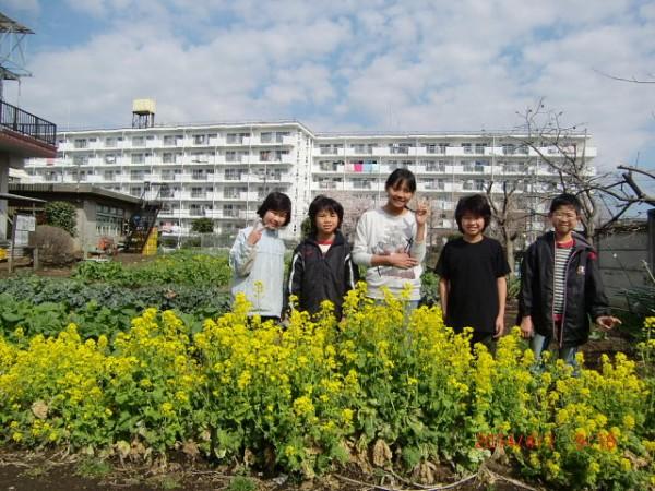 H260329野島農園 (31)