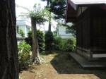 H260726稲荷神社清掃 (8)
