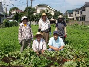 H260712サツマイモ除草 (2)