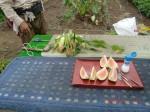 H260810野島農園収穫日 (9)