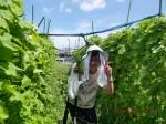 H260815長生き体操・収穫祭 (19)