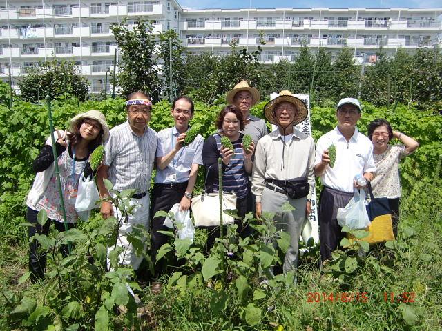 H260815長生き体操・収穫祭 (23)