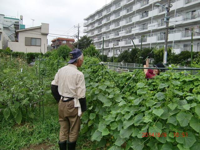 H260823野島農園懇親会 (20)