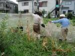 H260824野島農園共同作業日 (15)