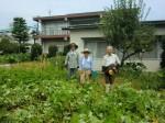 H260824野島農園共同作業日 (25)