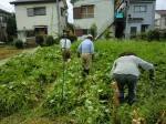 H260824野島農園共同作業日 (26)