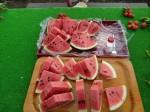 H260830秋野菜準備 (8)