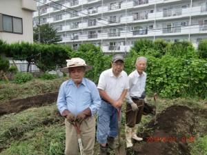 H260830秋野菜準備 (3)