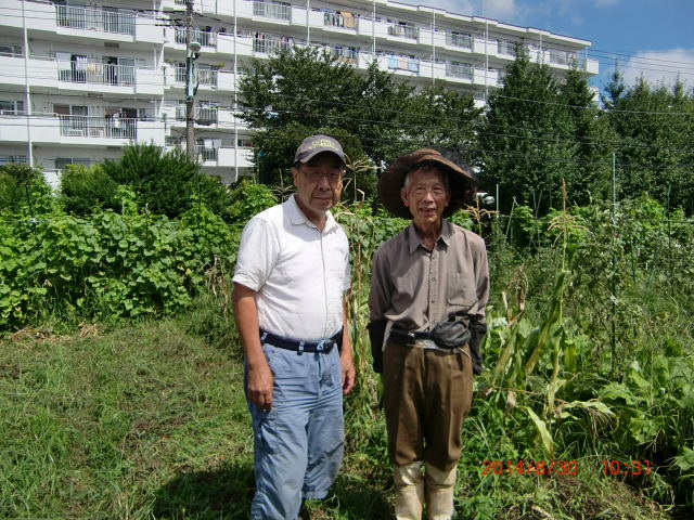 H260831秋野菜準備 (2)