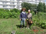 H260831秋野菜準備 (1)