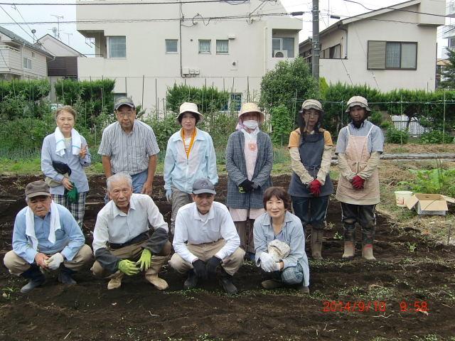 H260910ジャガイモの種植え付け (19)