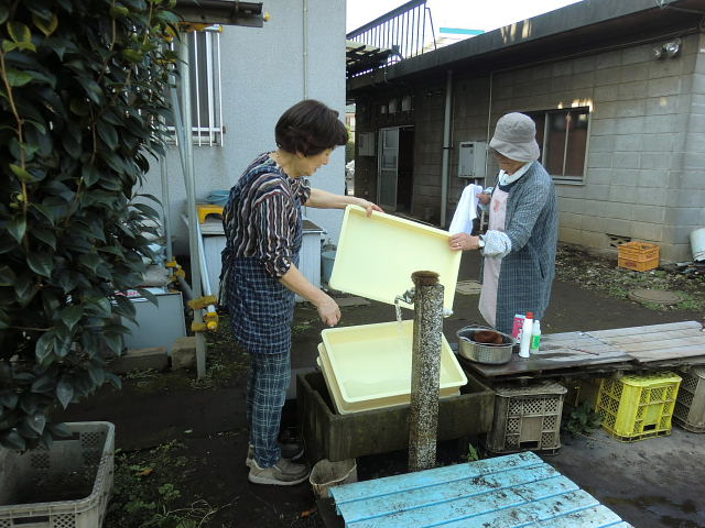 H261025サツマイモ掘り準備 (15)